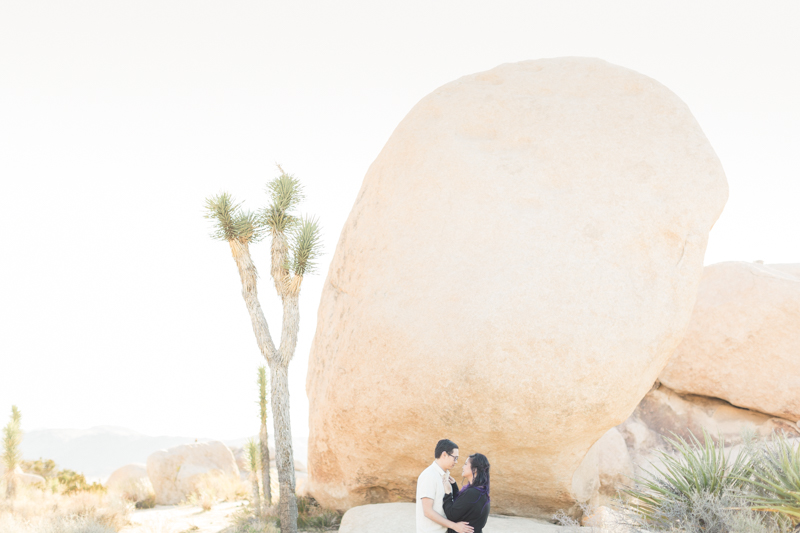 Joshua Tree Engagement Denise + Andrew-8.jpg