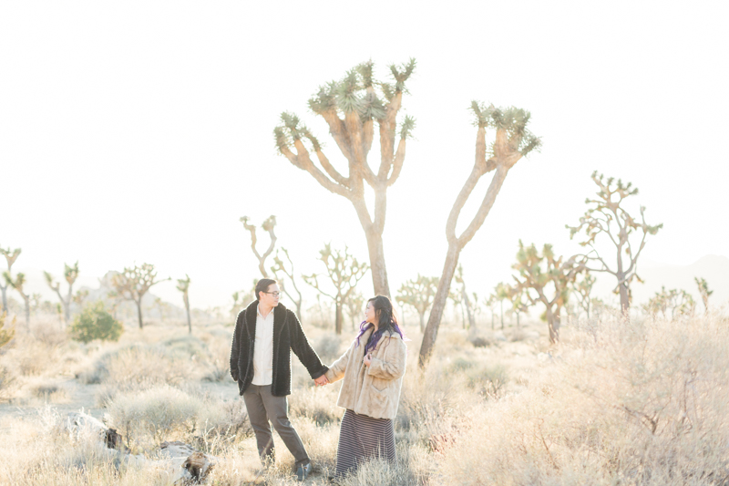 Joshua Tree Engagement Denise + Andrew-20.jpg