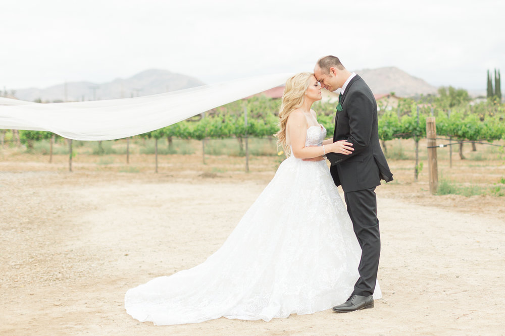 Christa Norman Photography - San Clemente Wedding Photographer - Ponte Winery Wedding-43.jpg