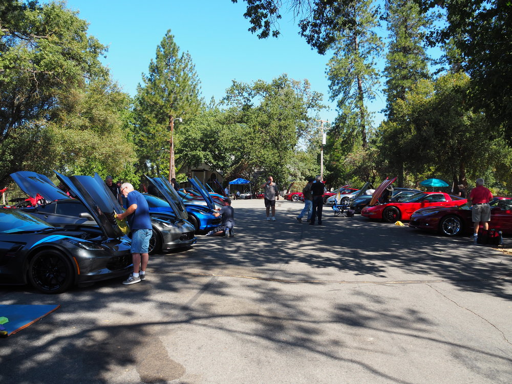 Vettes Under the Oaks Car Show