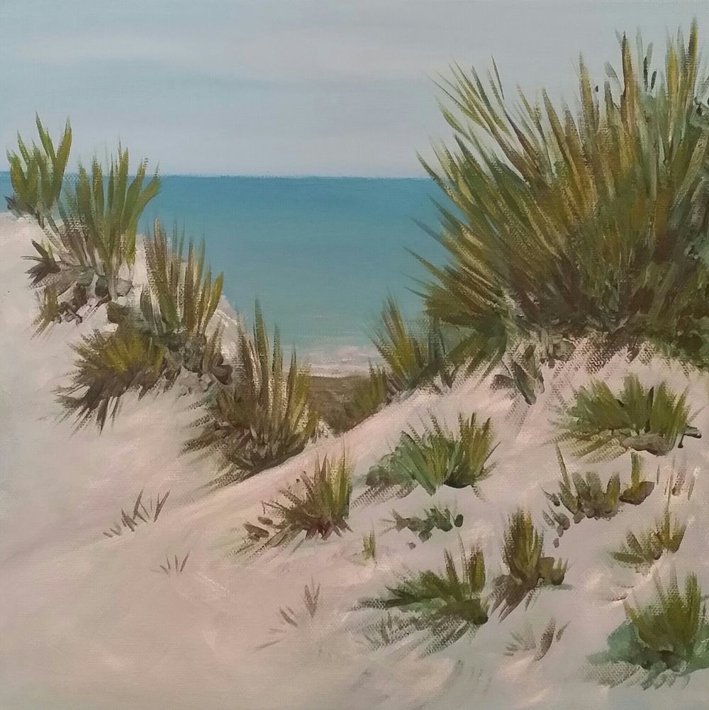 DUNES AT COLIGNY