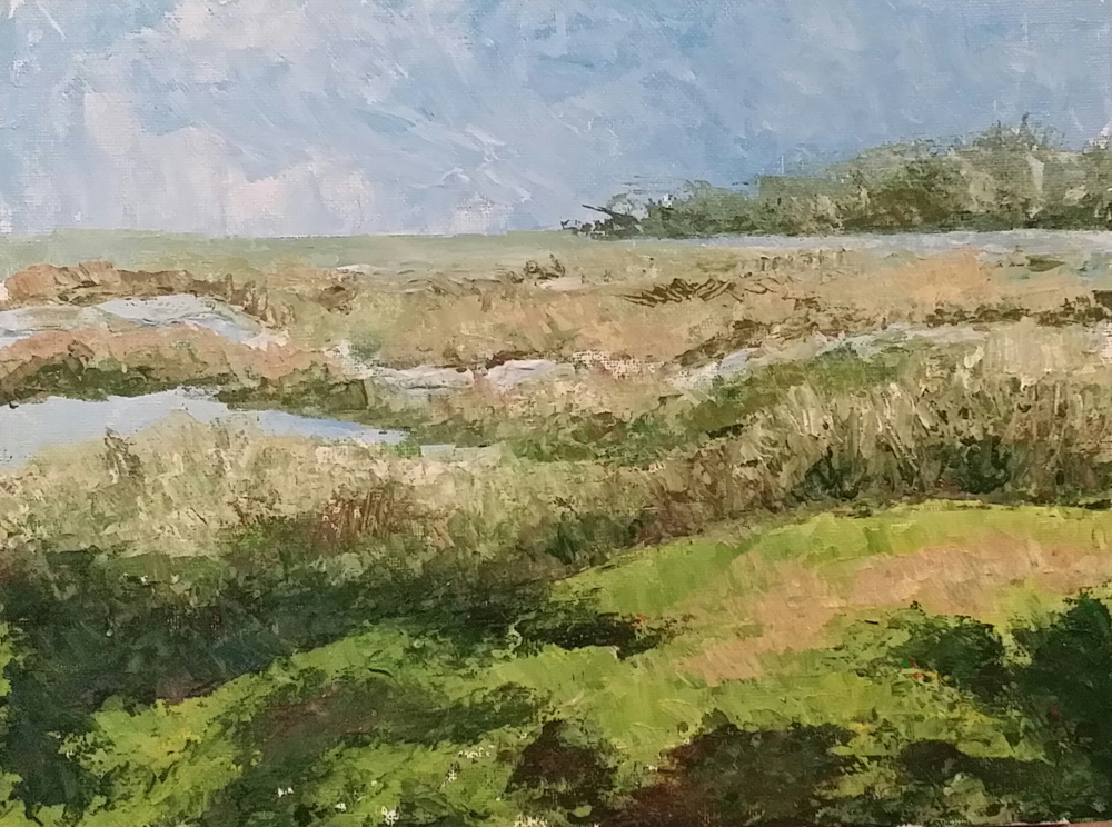 MARSHES OF THE COLLETON RIVER