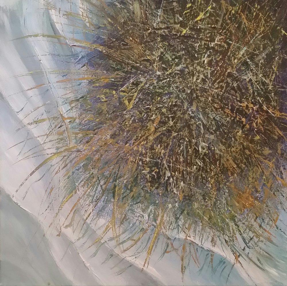 SEA GRASS: A BAD HAIR DAY