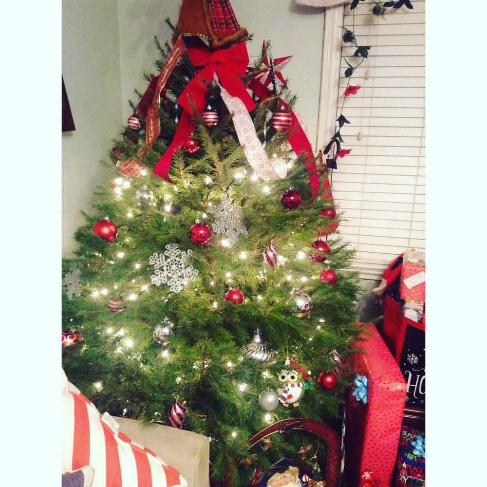 Merry Christmas! #merrychristmas #christmas
