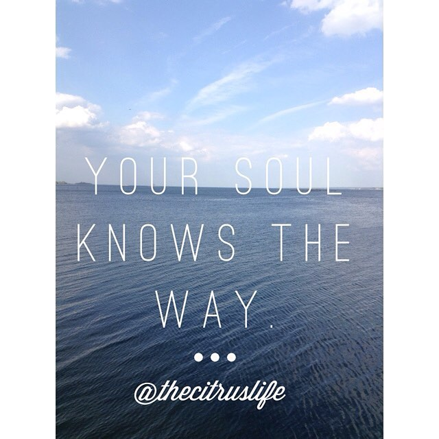 Your Soul Knows The Way. #FreeSpiritFriday @WordSwag. #WordSwagApp #thecitruslife