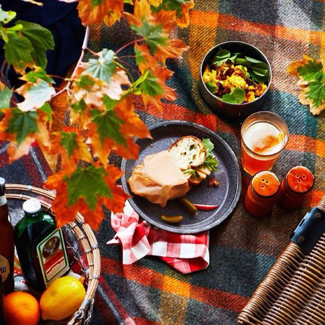 Anyone down for an Autumn picnic? Love the Fall. #Autumn #Fall #Season #Picnic #livehappily #TheCitrusLife