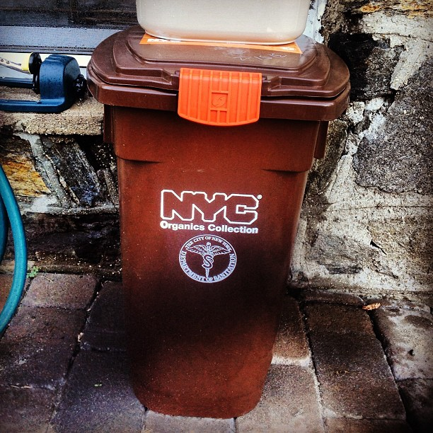 NYC Sanitation are really giving out compost bins now. Love the Autumn color. They can have my Fall and Winter compost but not Spring & Summer. What will I do with my large tumbler now? #diehardcomposter #keepitfresh #thecitruslife #nycsanitation #organic #compost