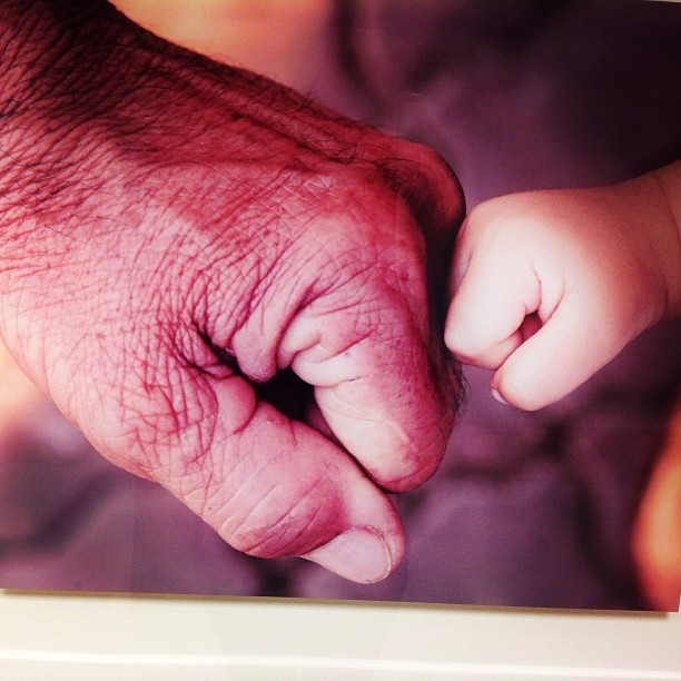 The hospital had amazing photos adorning the hallways and this grandpa/baby fist bump was so sweet. #fistbump #baby #livehappily