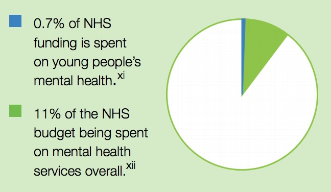 Figure 2: Overview of NHS budget spent on mental health services