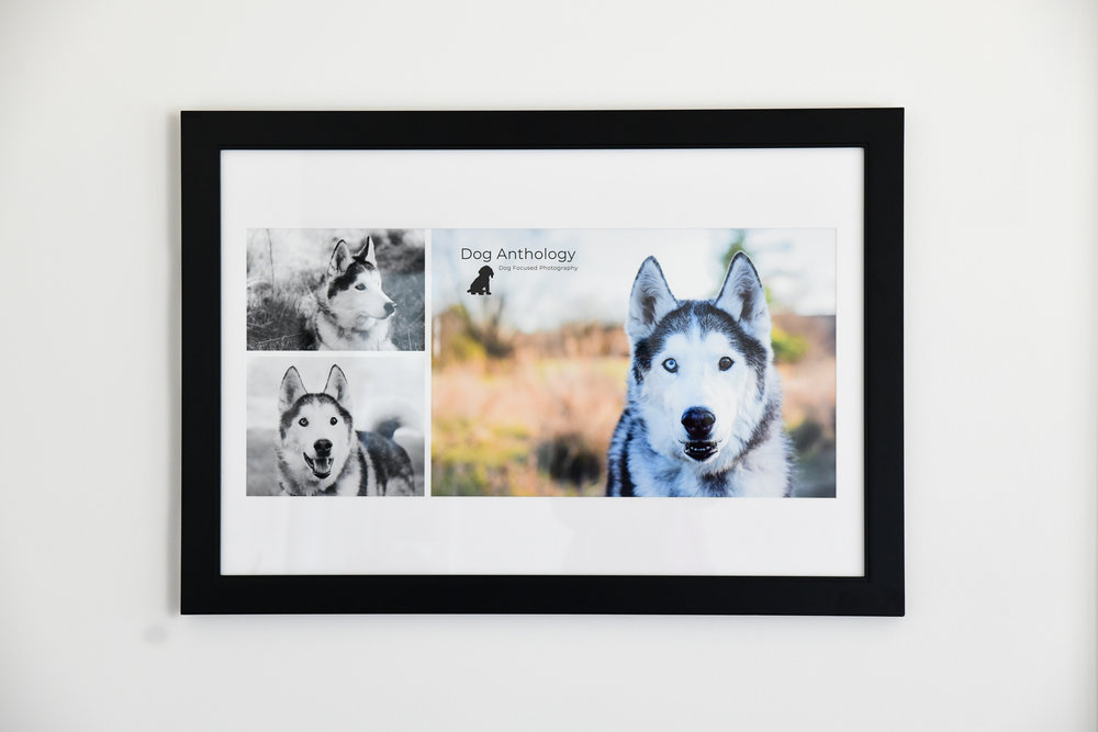 Custom made, professionally framed collages. - Choose three of your favorite photos and the photographer will make a custom made collage that will be professionally framed. (See frame color options below.)