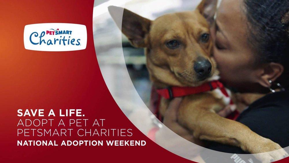 adoption weekend.jpg