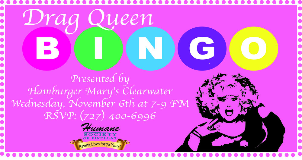 Drag Queen Bingo nov 6 Cover.jpg