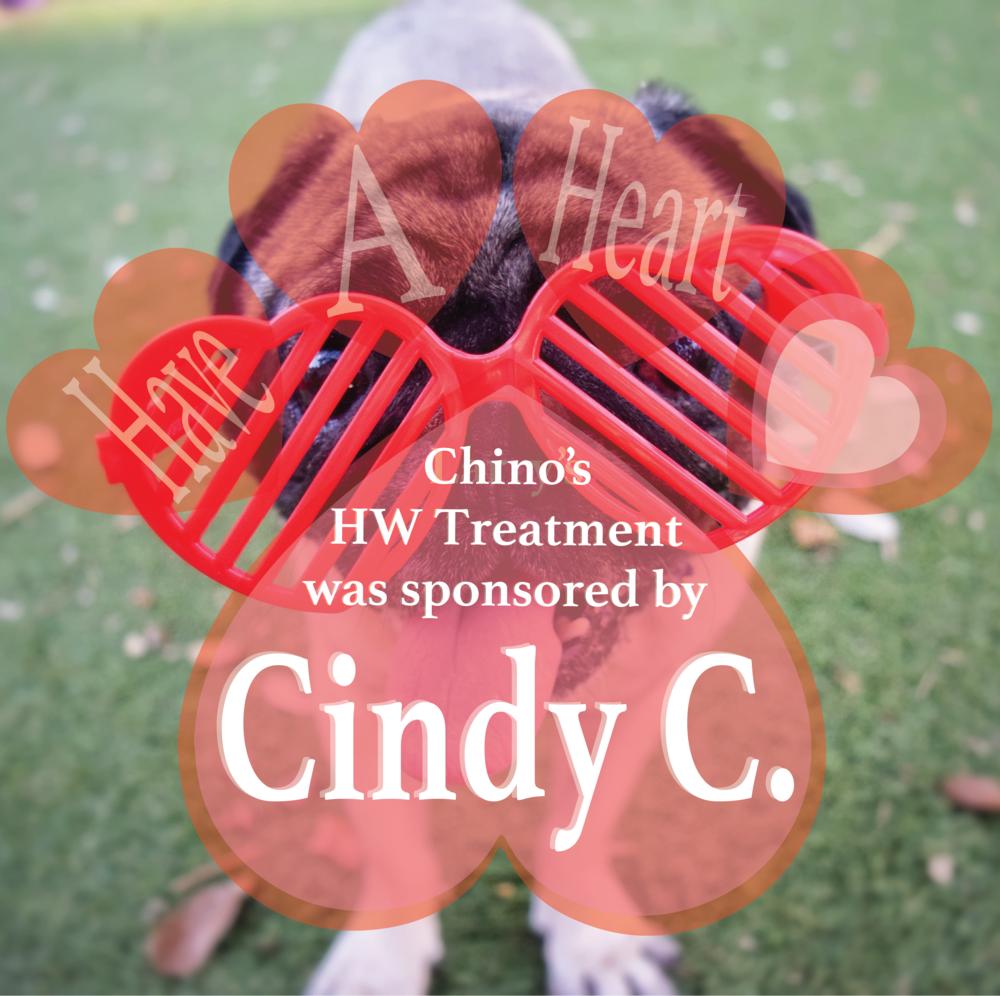 HW+ Sponsor paid2 CHINO.png