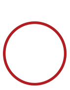 Vigilant PS IT Security Infrastructure Icon 1 Red 1 142 142 Lowered 1.png