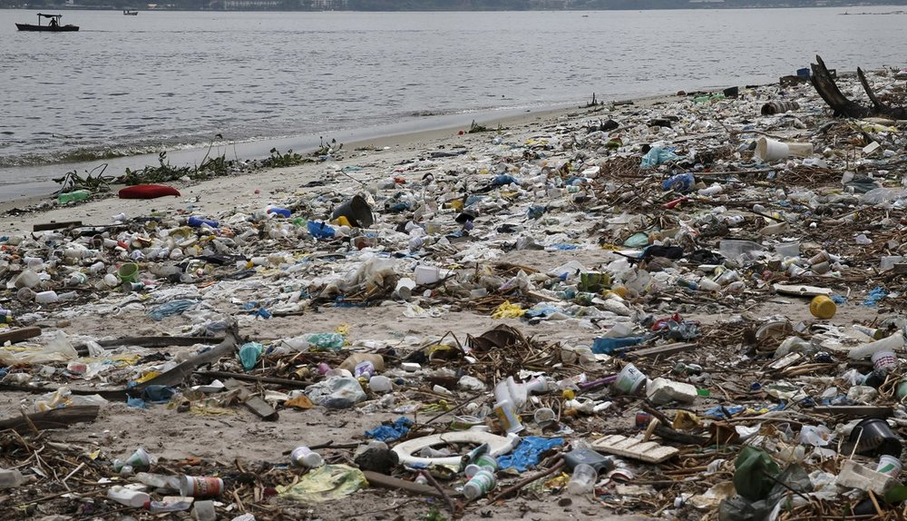 2 waterways that will host 2016 Olympic events are filled with dead fish and trash 16 months before the games. Photograph: Business Insider