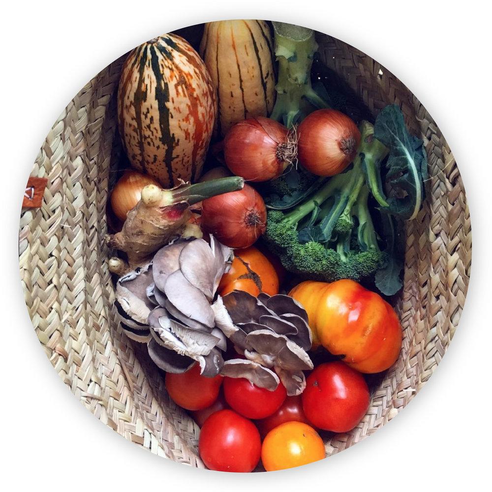 Plant Based, Legumes, Pulse Vegetables. Vegan, Vegetarian, Non-GMO