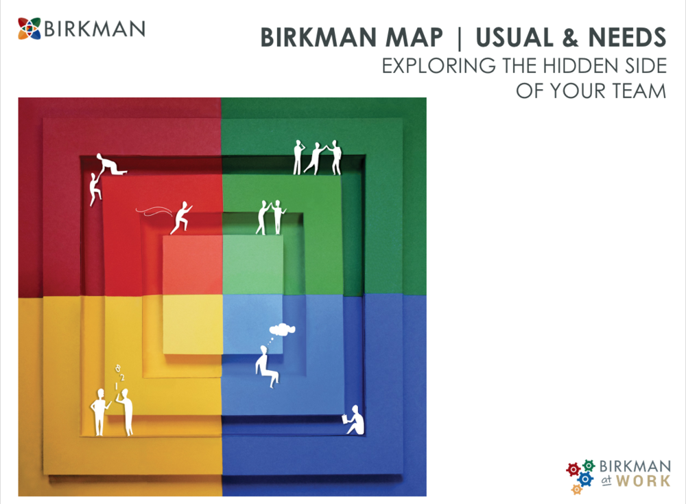 The Birkman Map - Discover what your team needs to increase their performance
