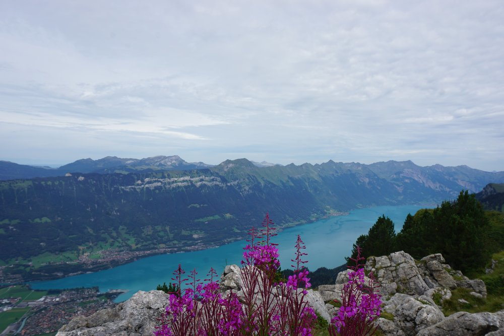 View of Lake Brienz after hiking through the beautiful Swiss Alps