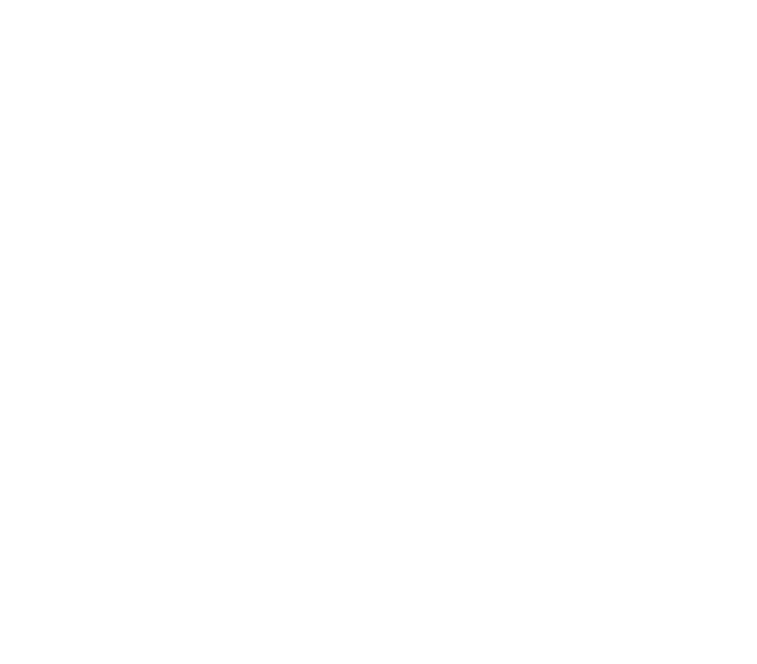 Dragonfly Outdoor Adventures