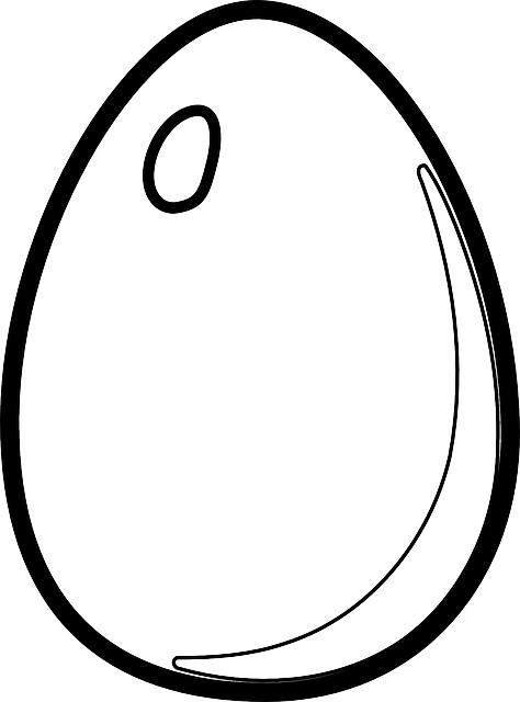 EGG OUTLINE.PNG