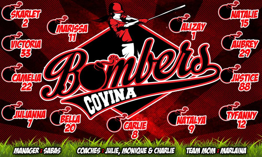 Baseball & Softball Banner Ideas -