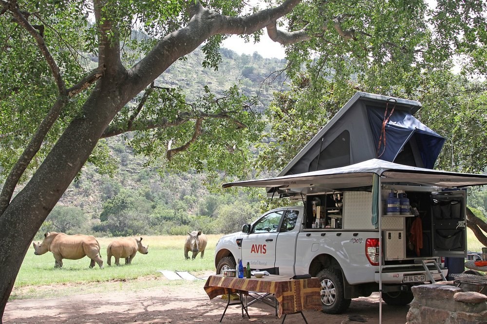 3 rhino Avis camp setup.jpg