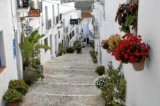 Malaga_casco historico.jpg