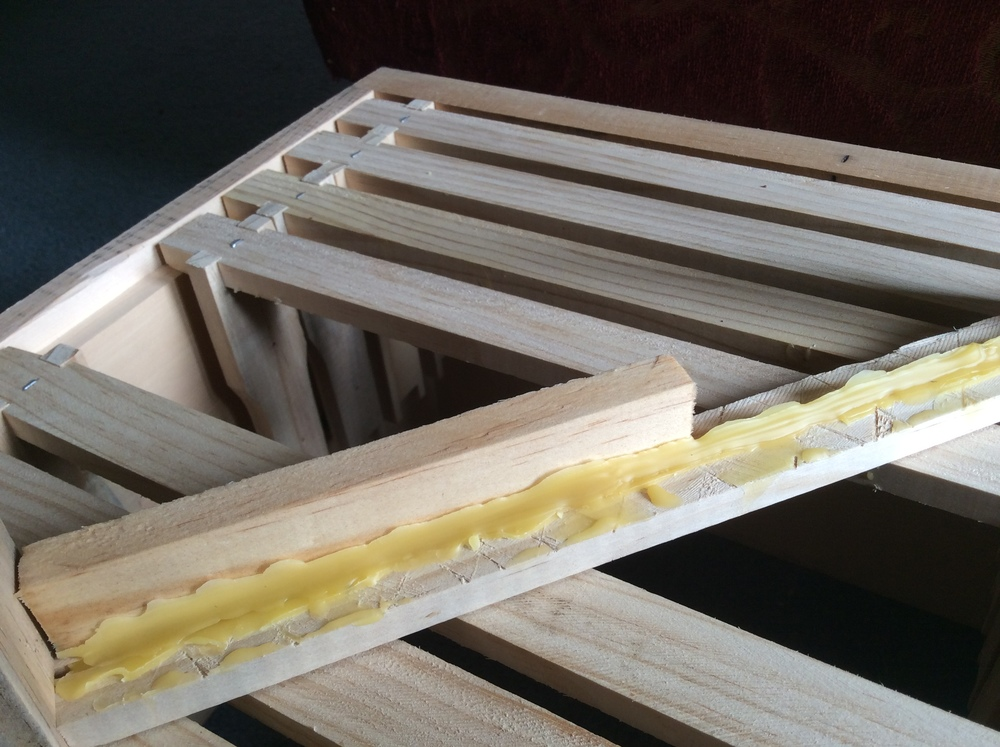 Wax starter strip on Warre frame using a wet strip of wood as a guide