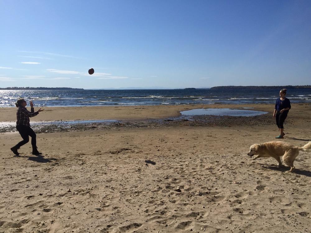 Beach at Alburgh Dunes State Park