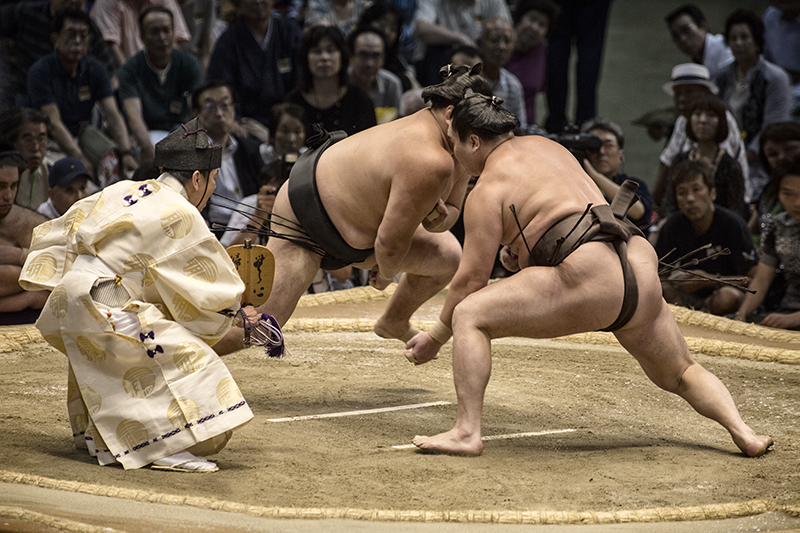 Sumo Stand Off