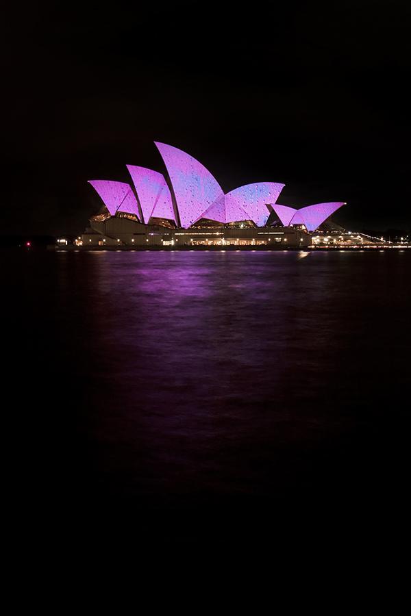 Pink Sails