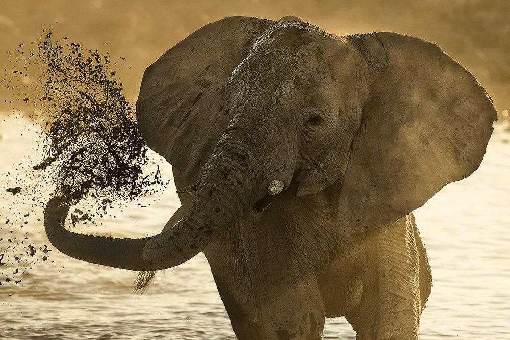 Mud Spray