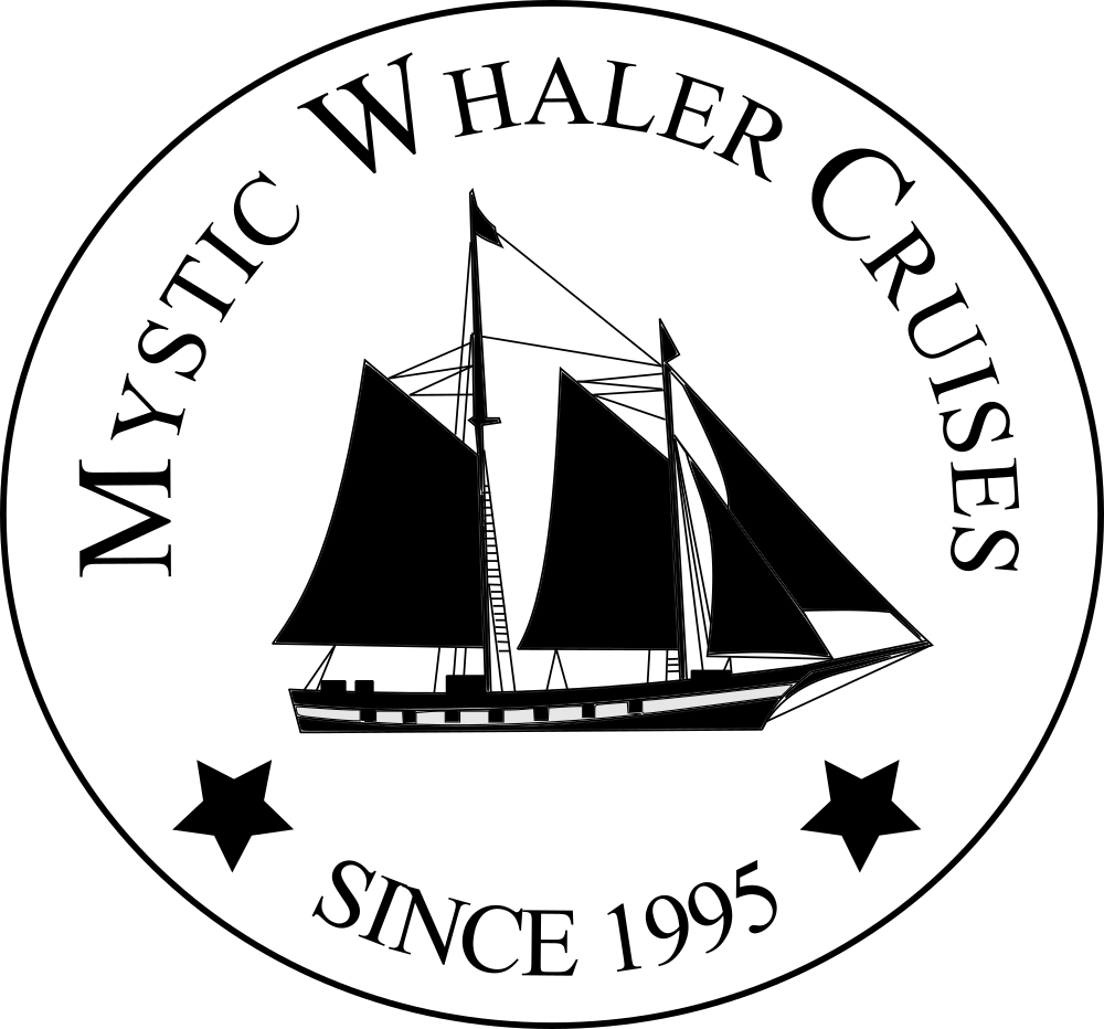 Mystic Whaler Cruises - Tall Ship Sailing Adventures