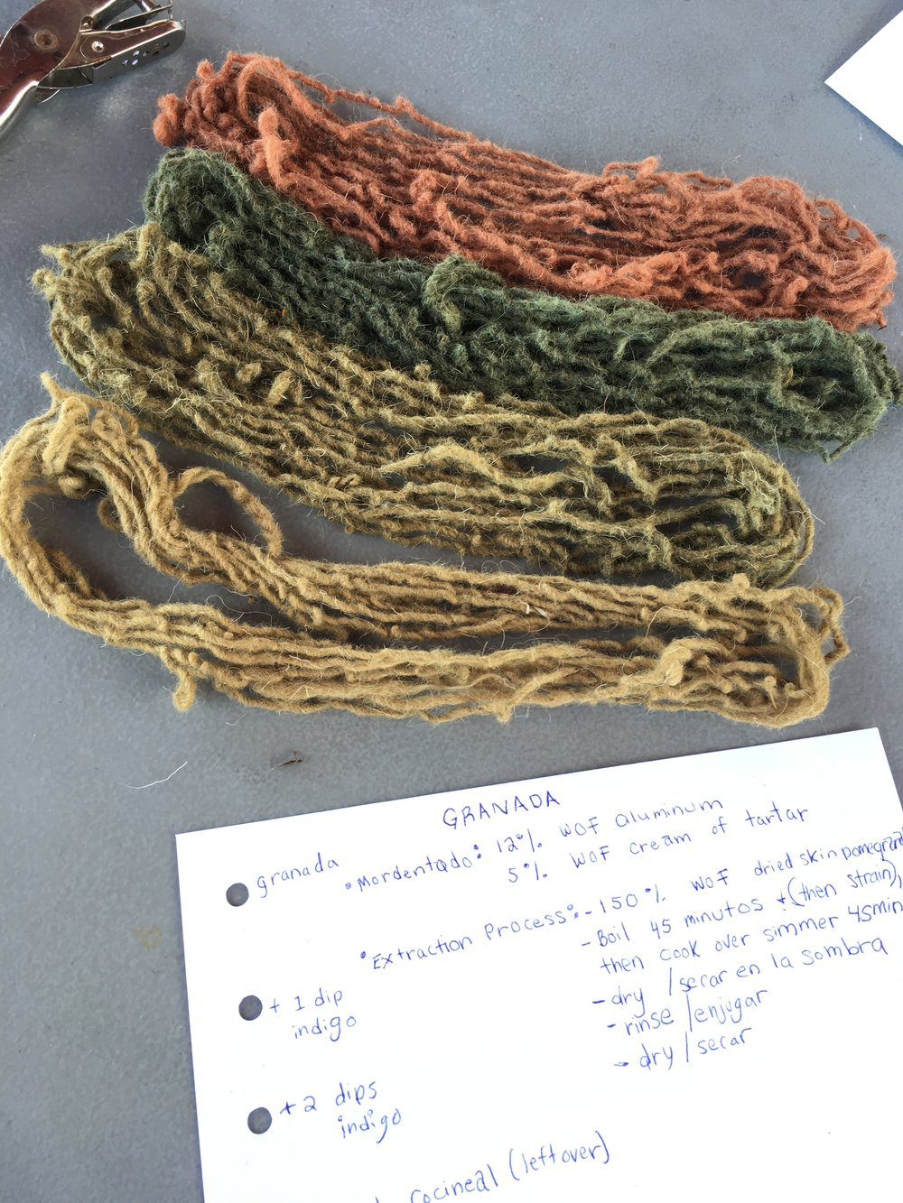 ingredient-natural-dye-class-oaxaca.JPG