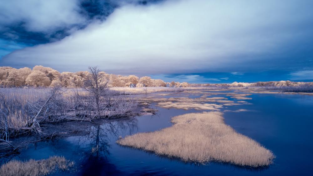 Sesuit Creek