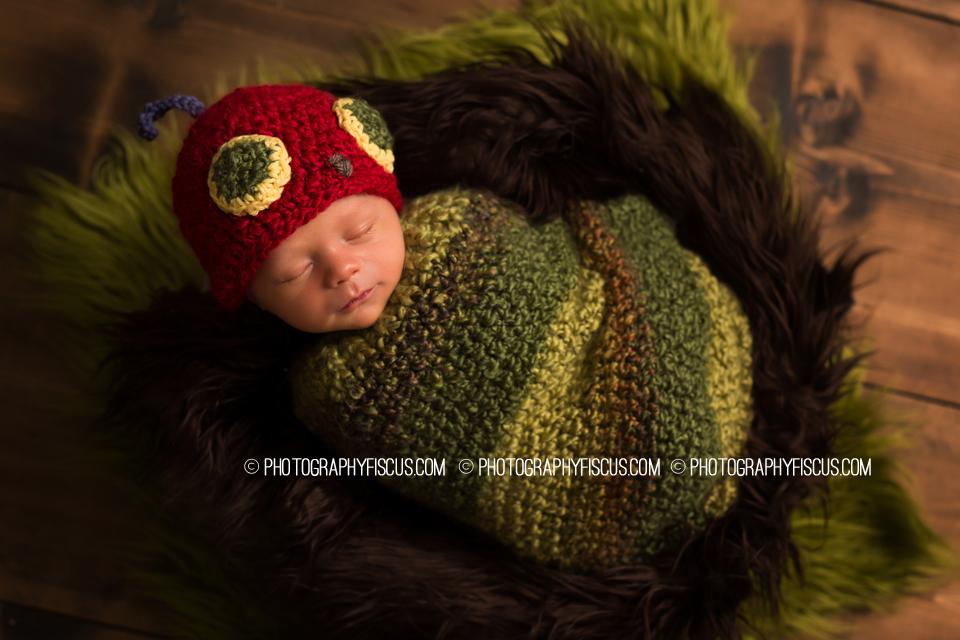 Hungry Caterpillar Newborn Prop.JPG