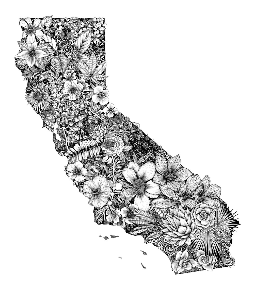 California-illustrator-maggie-enterrios-littlepatterns