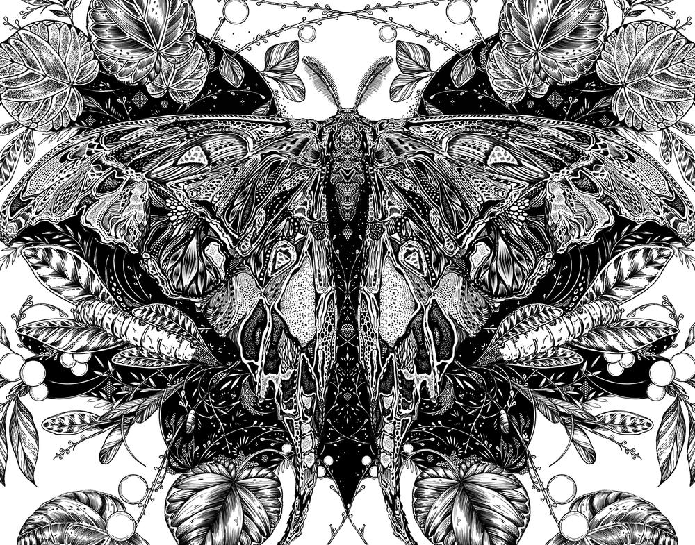 moth-thumb.png