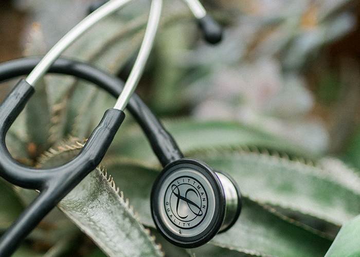 stethoscope over a cactus outdoors nature