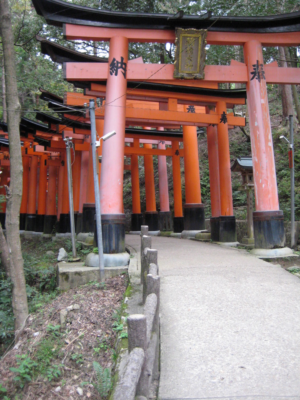 At Fushimi Inari, Kyoto, one of the strangest, most hallucinatory places I've been in my life. Founded in the 8th century, it is the mountain shrine of Inari, the Shinto rice-god, and god of worldly success. His mascot is the fox, or  kitsune . Hence, there are thousands of  torii  (gates) donated by businesses & individuals and hundreds of idols of  kitsune  everywhere.
