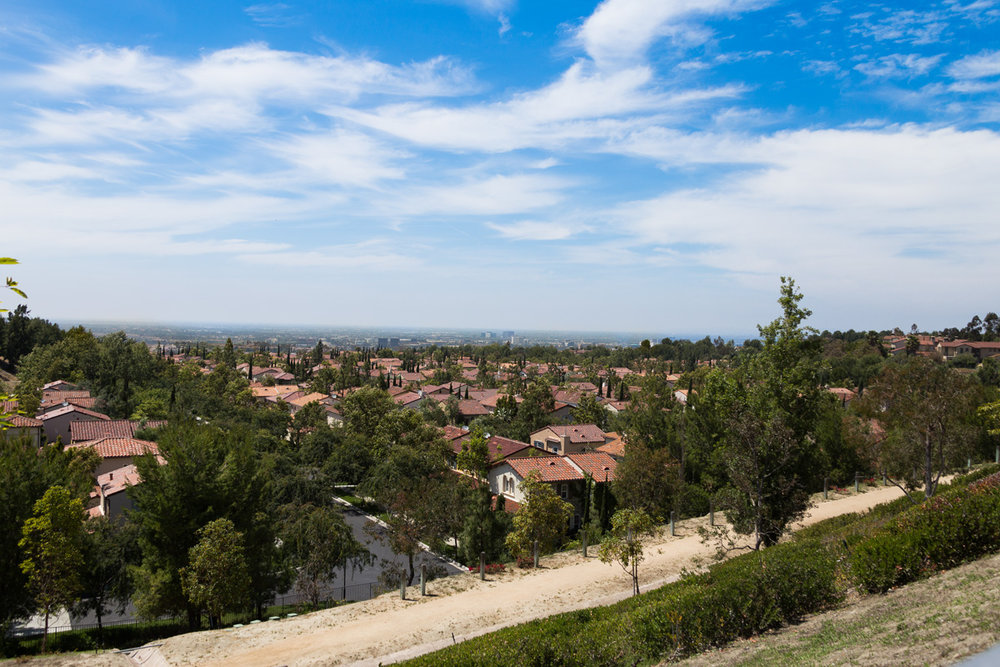 31 View Terrace, Irvine_0338.jpg