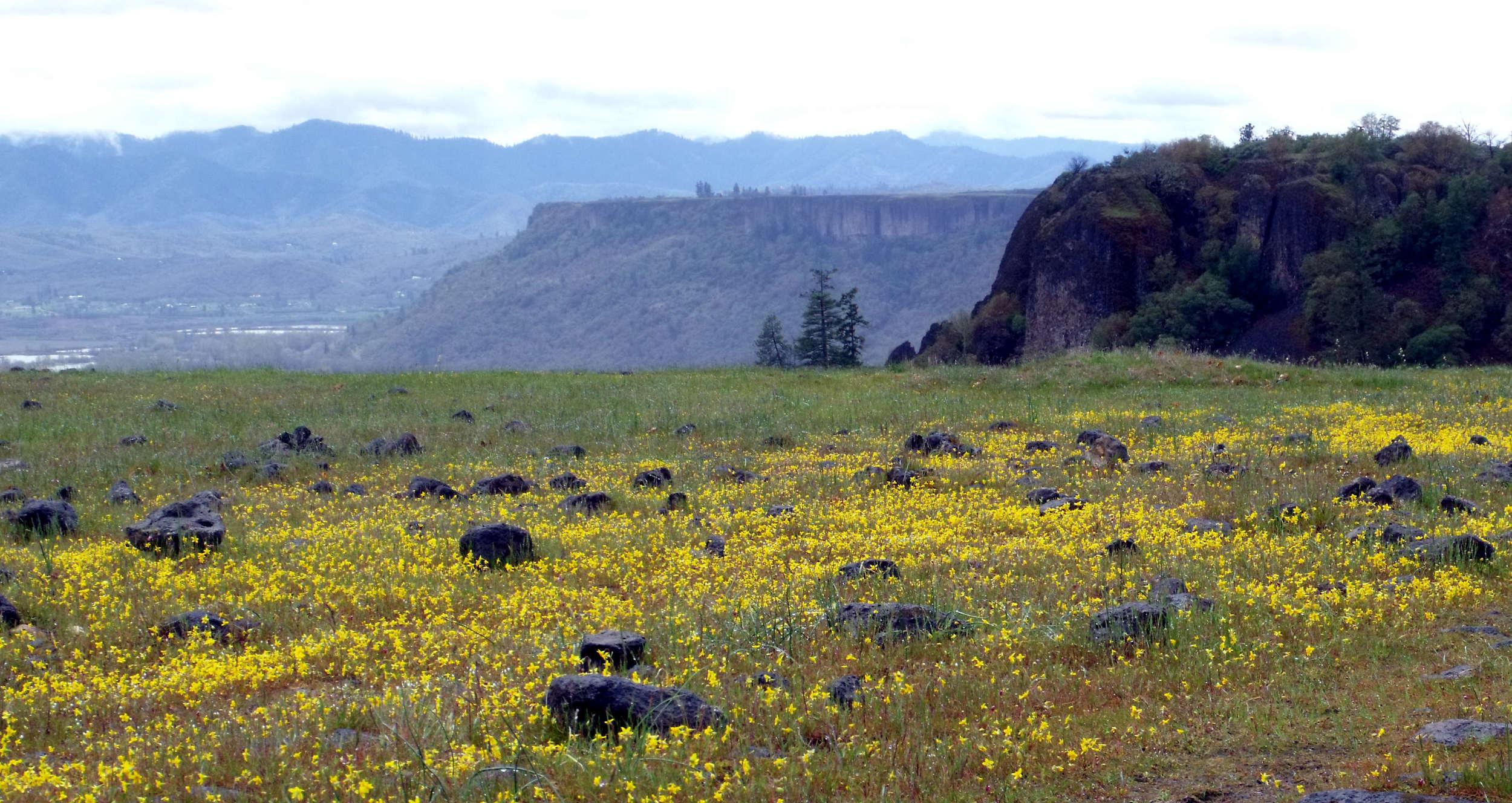 Remarkable Hike Upper Table Rock Home Interior And Landscaping Dextoversignezvosmurscom