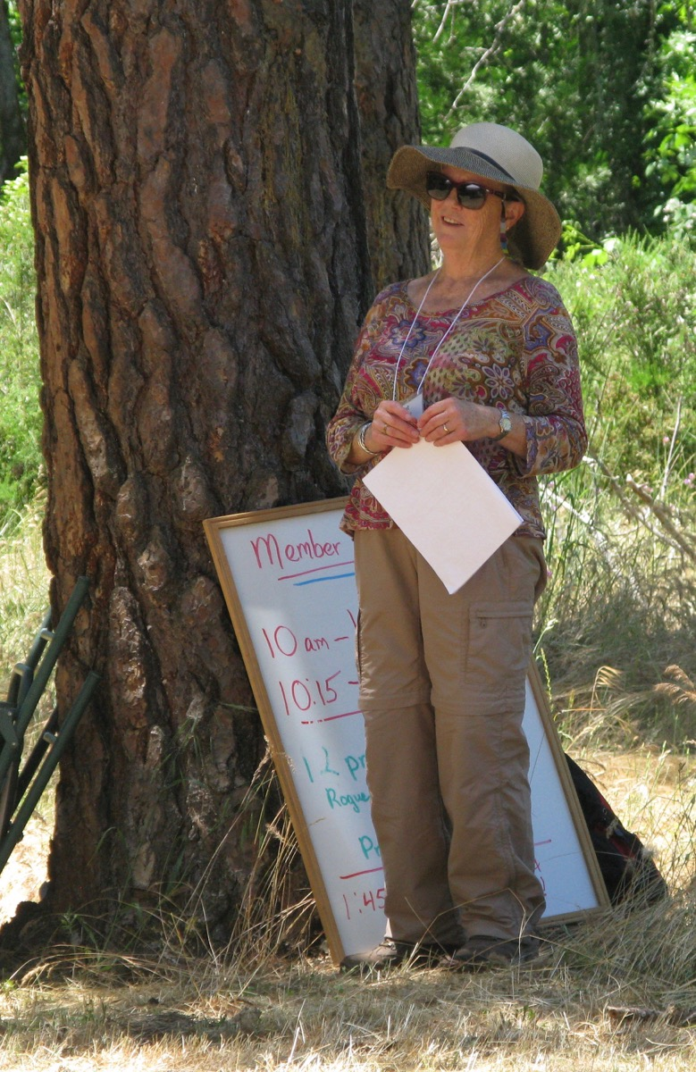 2017AnnPicnic_RichardWagner (18)Pattie-BigTree.jpeg