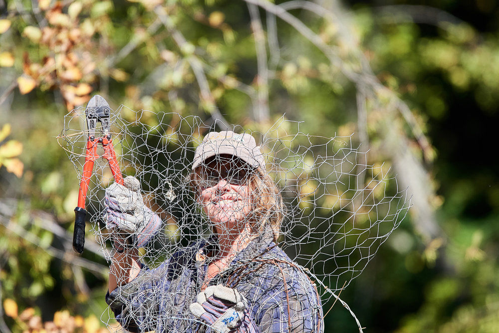 Kristi shows part of a fence she and volunteers removed from the Rogue River Preserve. Photo by Frank Lospalluto.