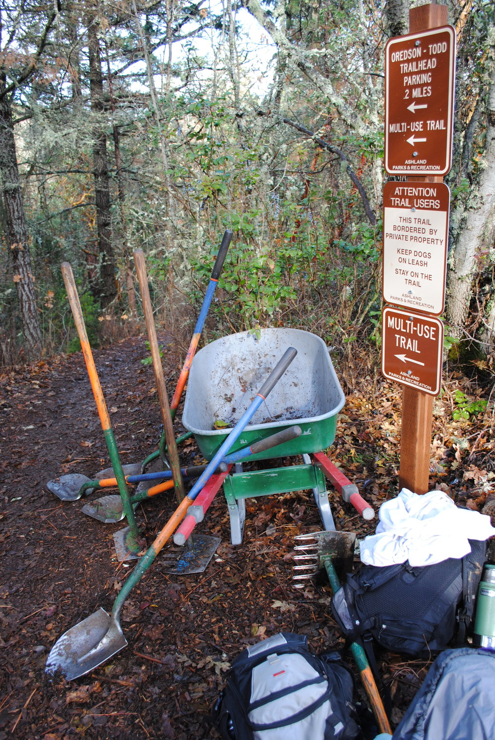 John Muir School 7th & 8th graders adopt the Woods stewarding and learning throughout the year.