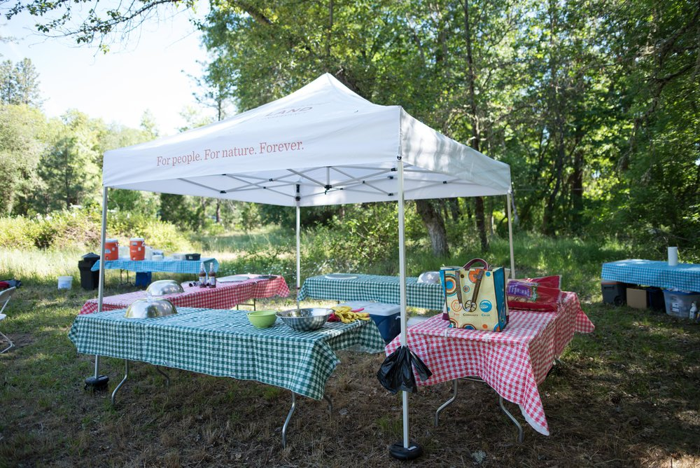 2018AnnualPicnic_Professinal (140)_ForWeb4stars.jpg