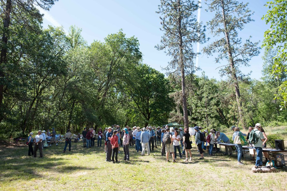 2018AnnualPicnic_Professinal (144)_ForWeb4stars.jpg