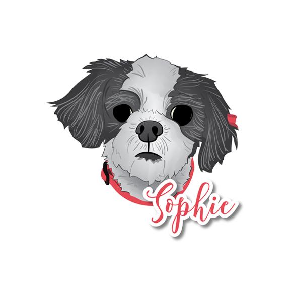 Sophie_01.jpg