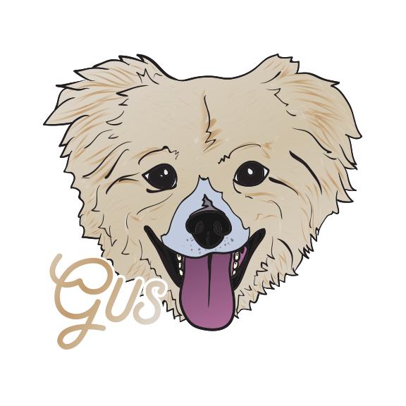 Gus2.jpg