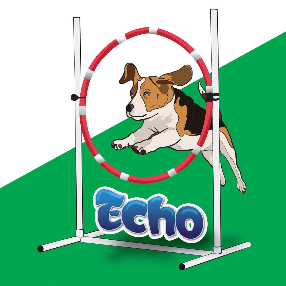 Echo_REV.jpg